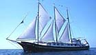 Alta Galapagos Cruise official website