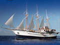 Sagitta Galapagos Sailing Cruise official website