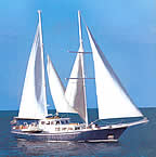 Beagle Motor Sailing Galapagos Cruise official website