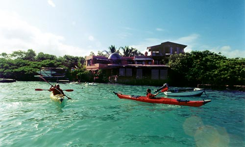 Red Mangrove Inn Galapagos Hotel Official Website